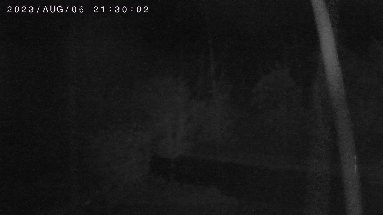Golfclub Oberpfälzer Wald - Webcam